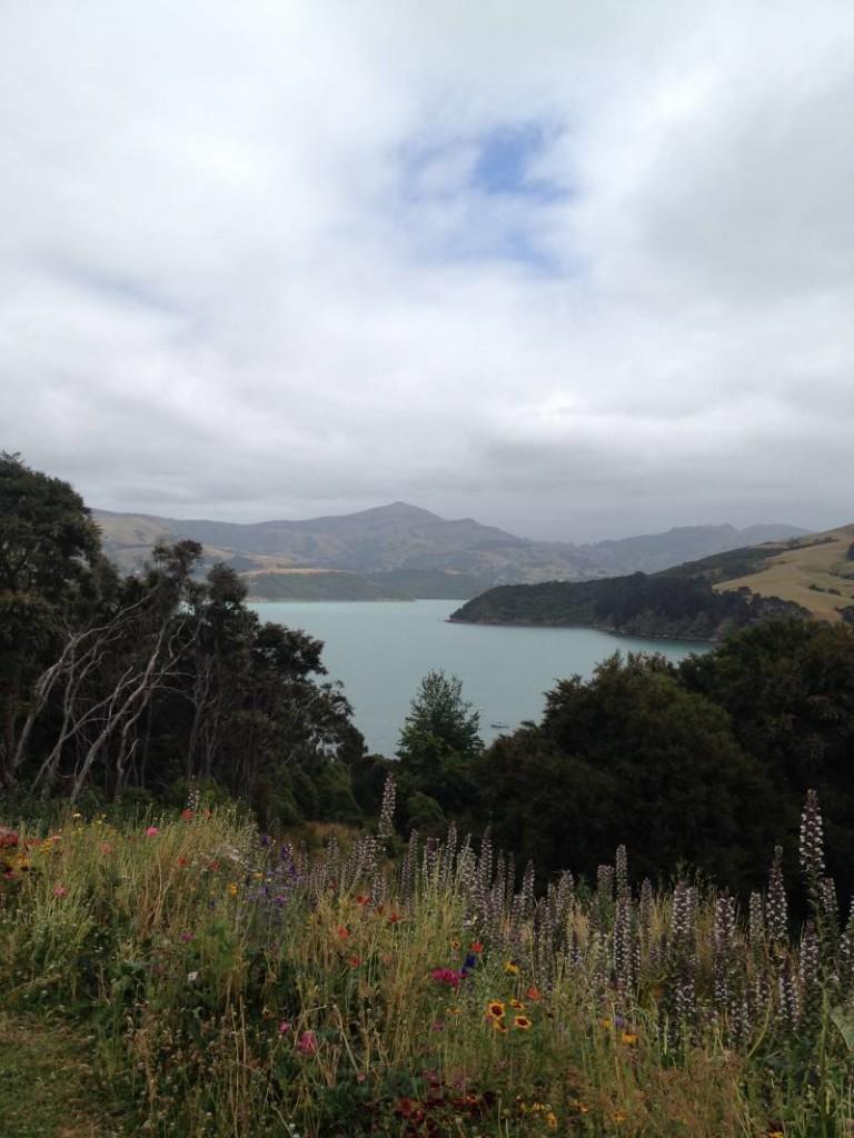 Bay view Summit Road