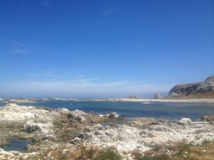 Kaikura Bay View