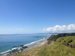 Mangawhai Clifftop Walk