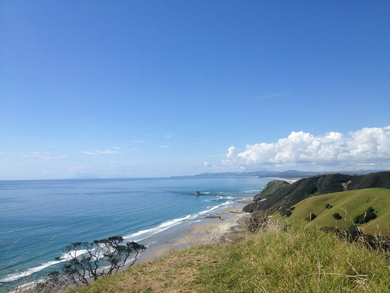 Mangawhai Clifftop Walk - free activities in New Zealand to keep your New Zealand travel budget in check