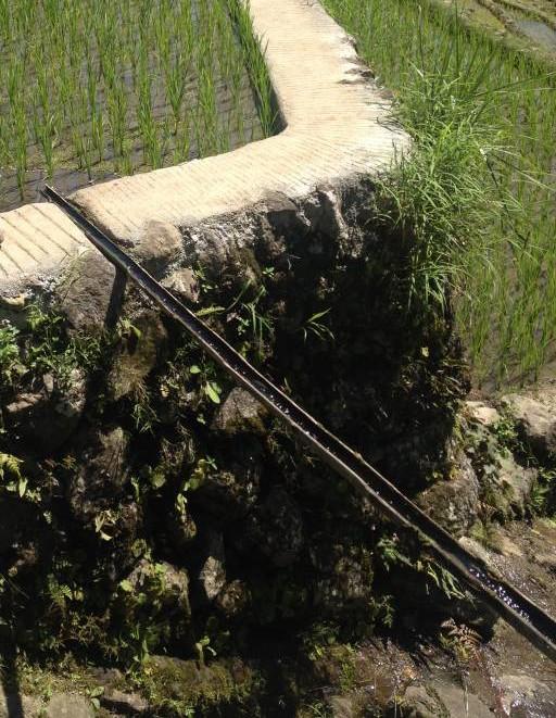 Rice terrace irrigation
