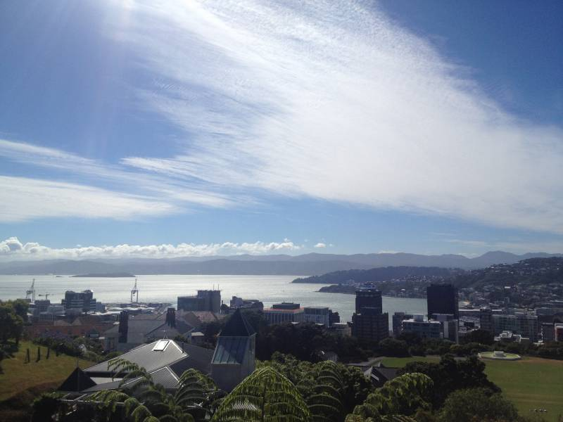 View over Wellington from cable car - 10 Awesome Things To Do In New Zealand