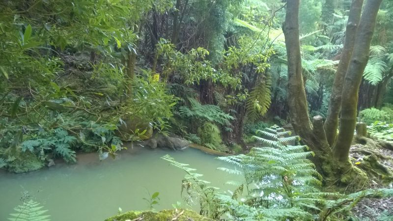 Caldeira Velha: a natural hot spring in the middle of the forest where you can soak and relax. There are showers and dressing rooms. Entree fee is €2 per person.