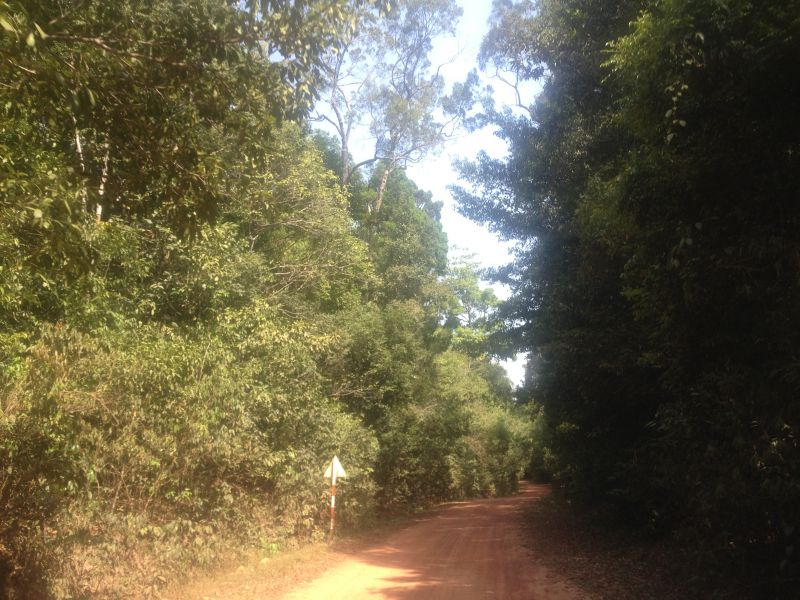 Riding on dirt roads and hiking in the jungle, very much fun!