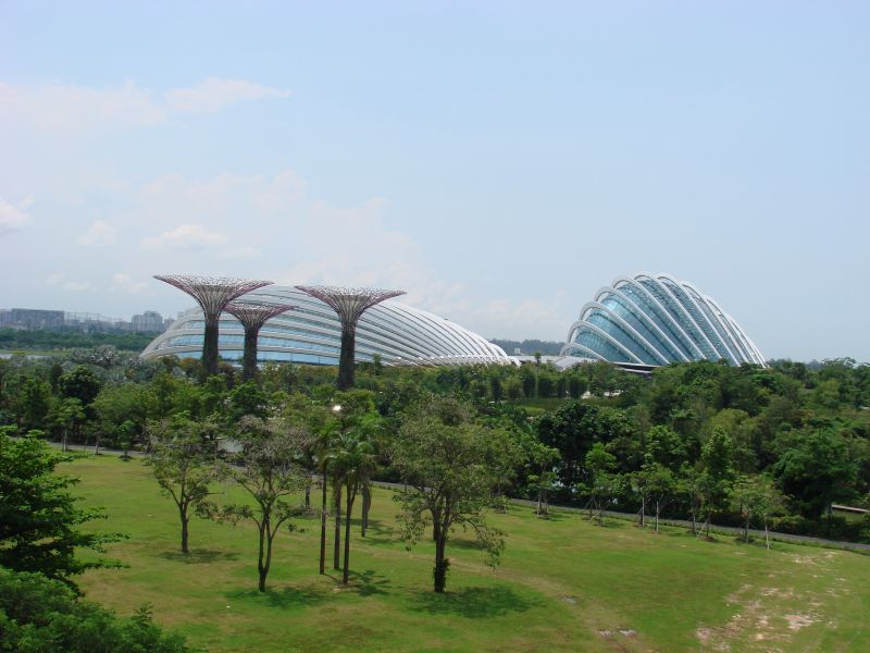 So many cool buildings and structures in Singapore, like the Flower Domes and the artificial trees in Gardens of the Bay.