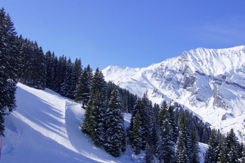 Austria mountain ski wintersport