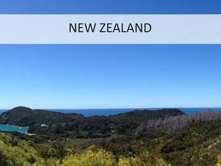 New Zealand - Phenomenal Globe Travel Blog