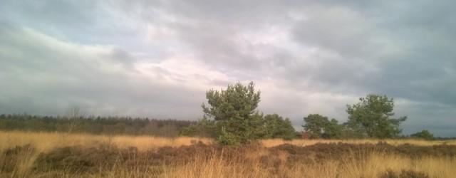 Sky at Havelte Drenthe hei