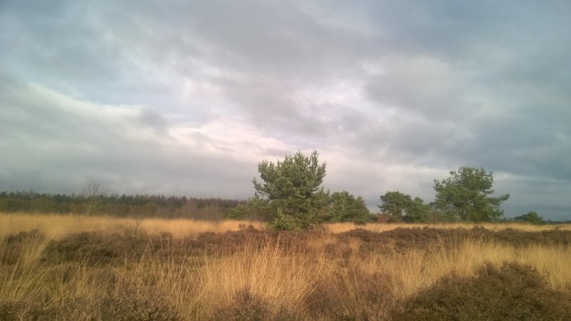 An Introduction To The Netherlands - Sky at Havelte Drenthe hei