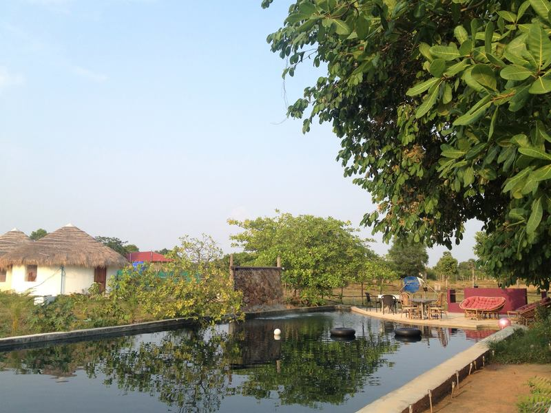 Swimming pool at Bohemiaz resort best budget accommodation in Cambodia