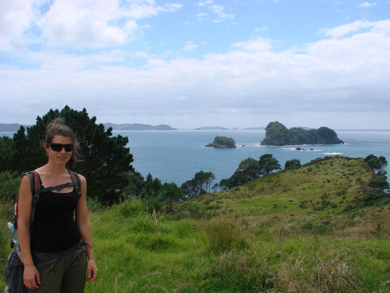 Coromandel Cathedral Cove hiking trail