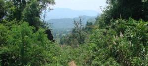 2 Week Itinerary For Laos: Luang Prabang, Vang Vien And Vientiane