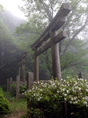Shinto gates along the Choishi Michi Pilgrimage trail