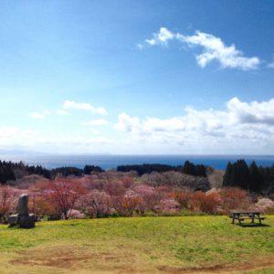 Matsumae Hokkaido Hakodate