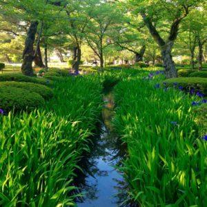 Kanazawa Kenrokuen Garden Japan