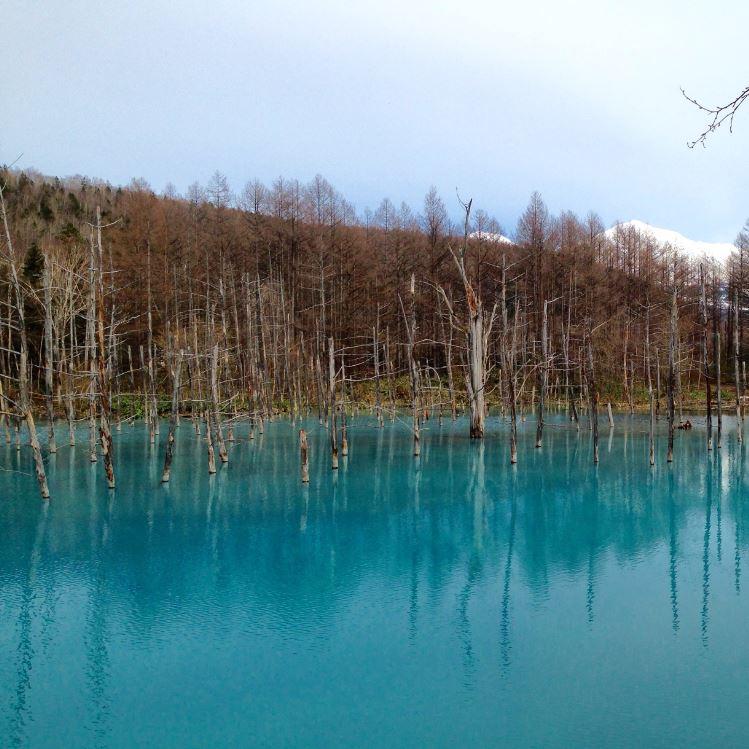 Blue pools Hokkaido Japan Furano