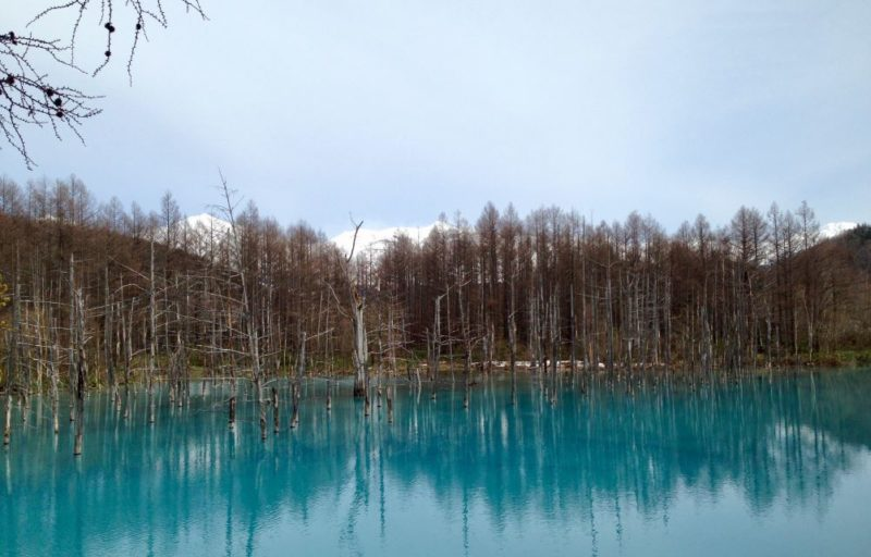 Blue pool Furano Hokkaido Japan