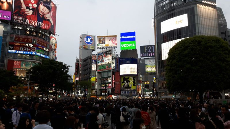 Shibuya crossing Tokyo Japan | Tokyo 3 days itinerary blog | things to see in Tokyo in 3 days | 3 days in Tokyo itinerary | itinerary Tokyo 3 days