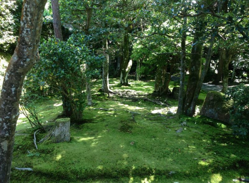 Green garden at Honen-in temple in Kyoto