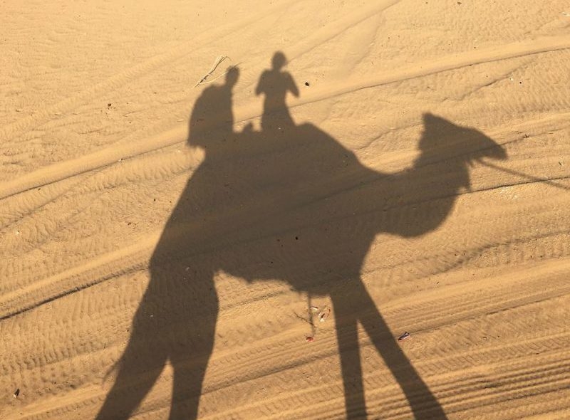 Camel riding in the Dubai desert