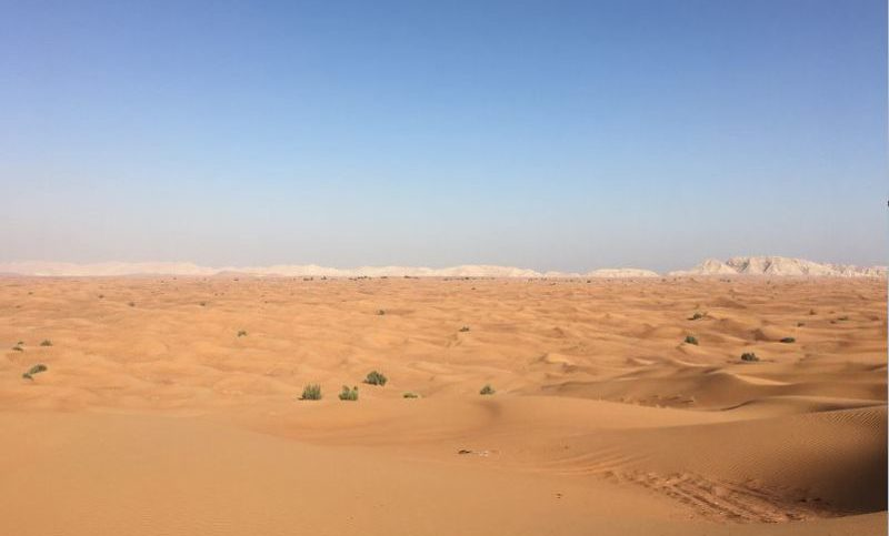 how to visit the desert in dubai