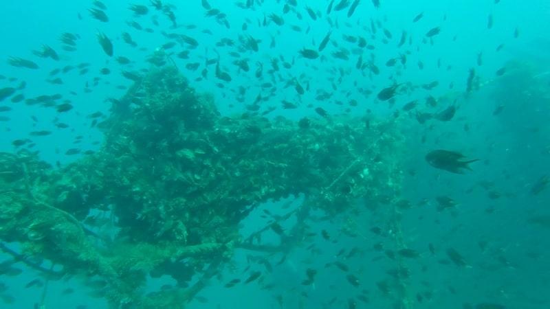 Dive Site Sugar Wreck Perhentian Islands Malaysia