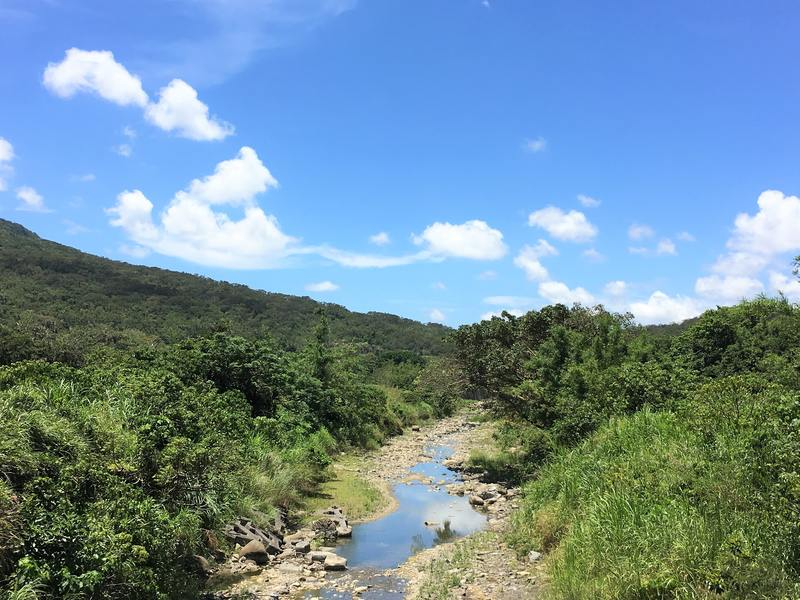 Kenting National Park is very green!