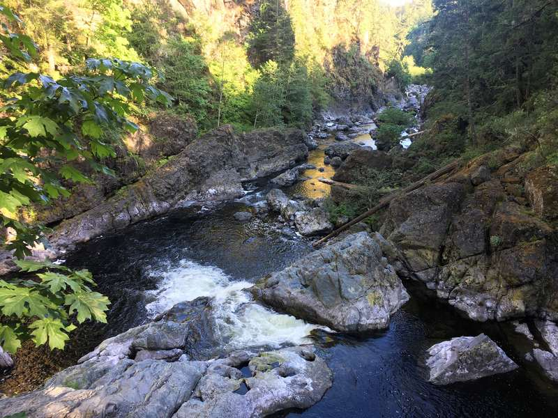 Best Things To See And Do On Vancouver Island British Columbia