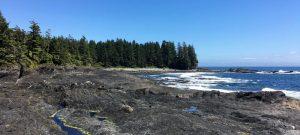 Botanical Beach Loop Trail Port Renfrew Vancouver Island short hike