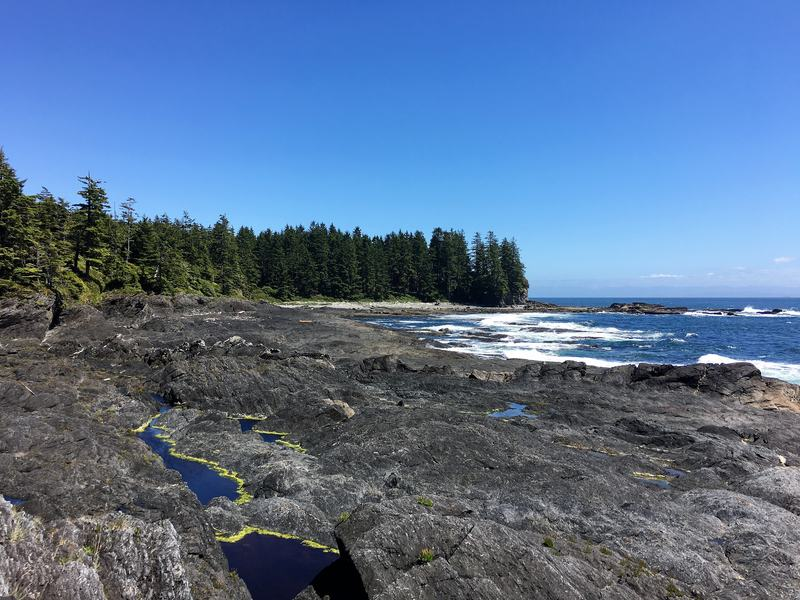 40 Things To See And Do On Vancouver Island