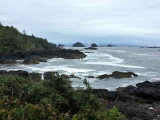Hiking the Wild Pacific Trail on the South Coast of Vancouver Island