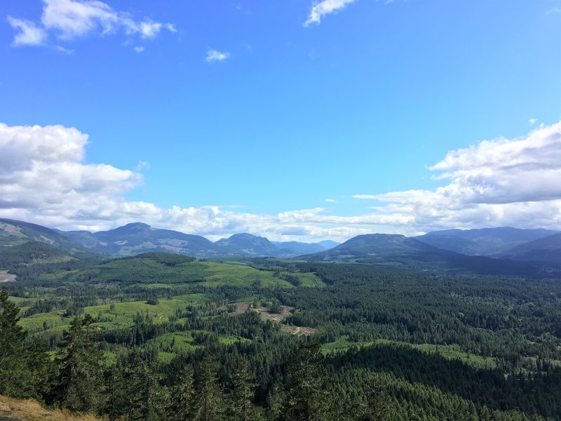 Port Alberni Fire lookout one of the best hikes on Vancouver Island