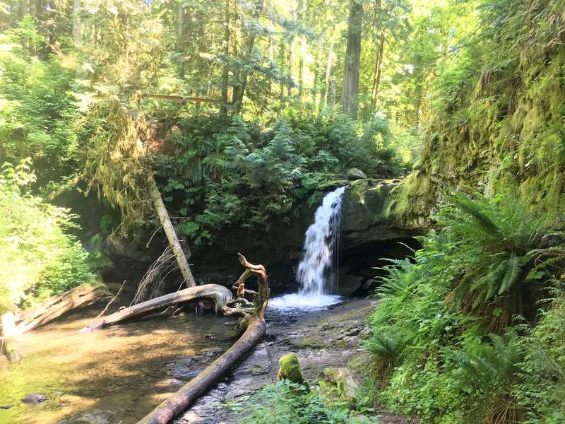 Stocking Creek Waterfall - Vancouver Island things to see and do