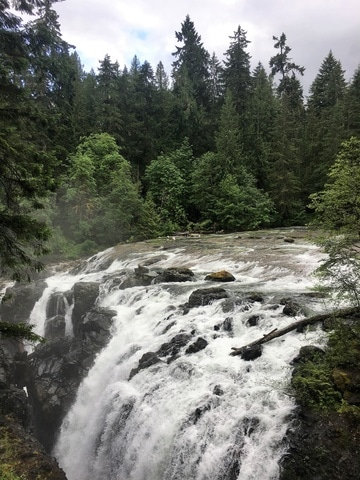 Visit the Englishman River Falls on Vancouver Island