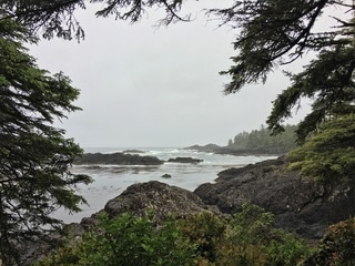 Which hikes to do on Vancouver Island - the Wild Pacific Trail