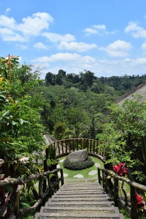 Basanta Agro Organic Luwak Coffee tasting on Bali
