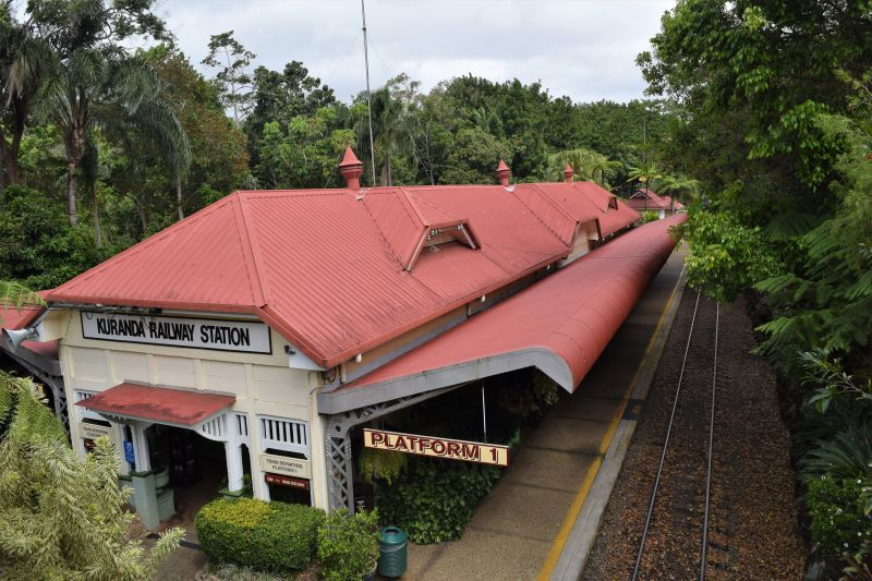 Kuranda Scenic Railway combination ticket with Skyrail Rainforest Experience