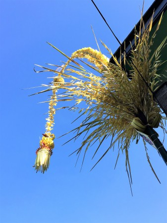 Penjor on Bali - Galungan Day religious holiday