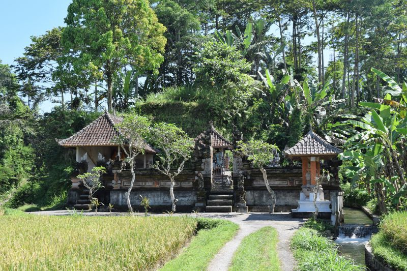 Unique experiences on Bali - homestay with Duara Travels
