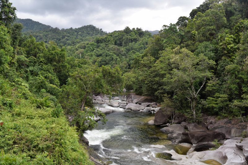 Babinda Boulders the perfect swimming hole Australia