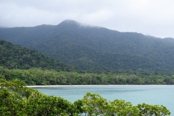 Cape Tribulation Beach and the Kulki Boardwalk - things to see and do around Cairns