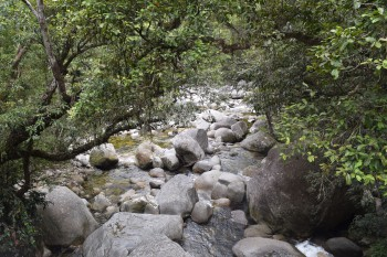 Mossman Gorge - great swimming hole highlights around Cairns