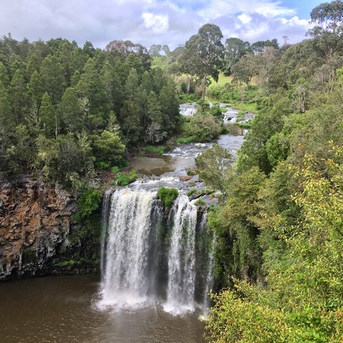 Dangar Falls - most beautiful waterfall in Australia