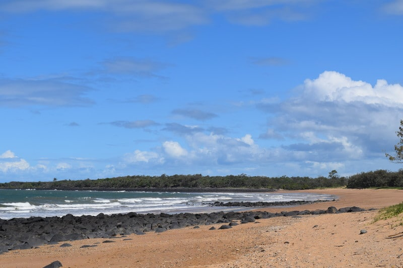 Mon Repos Beach - short hikes on the East Coast