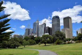 Sydney Botanical Gardens - green city space