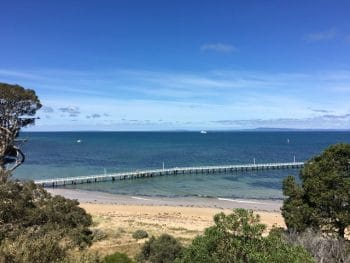 Things to do in Queenscliff - stroll around Princes Park