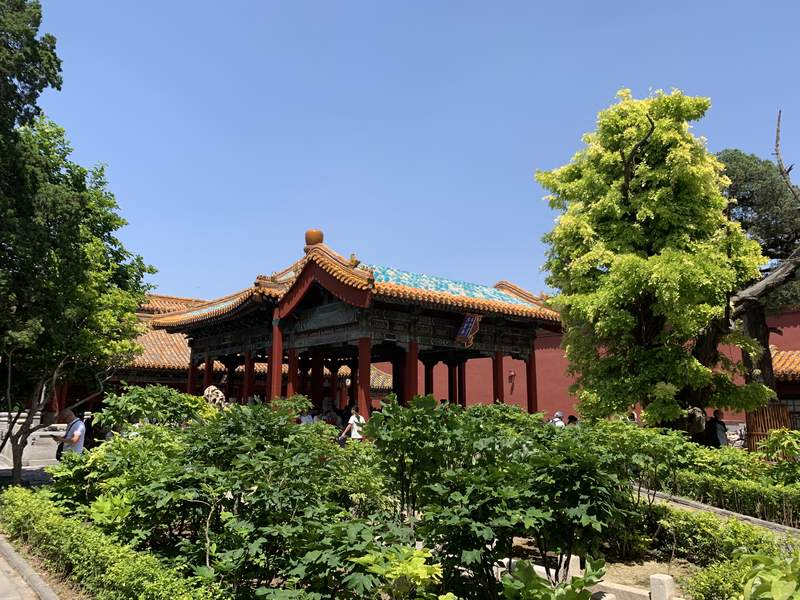 Imperial Garden at the Palace Museum