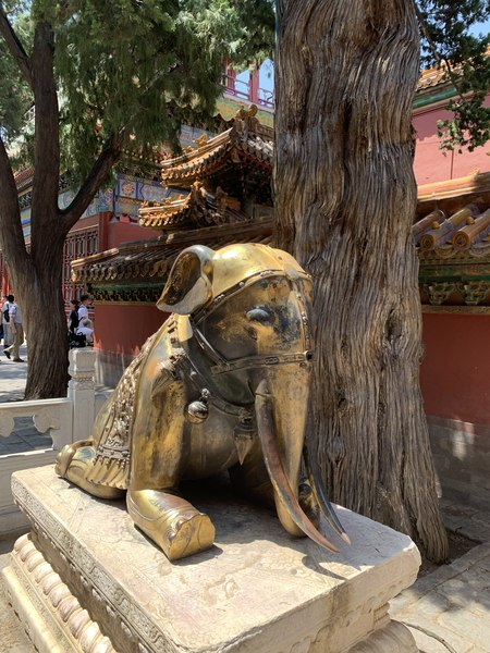Kneeling elephant in the Forbidden City Beijing