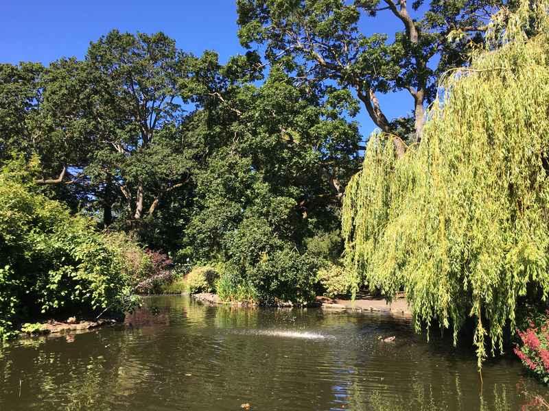 Beacon Hill Park in Victoria