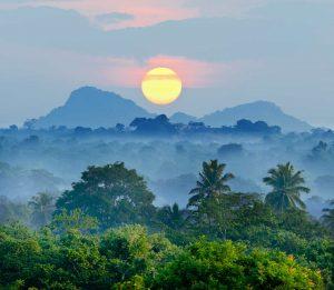 Beautiful sunrise over the jungle in Sri Lanka